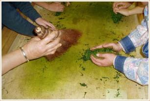 農業体験室「揉む」のイメージ写真
