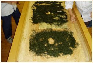 農業体験室「乾燥」のイメージ写真